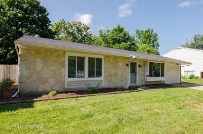 Elgin Single Family Home Contingent: 1145 Hunter Drive