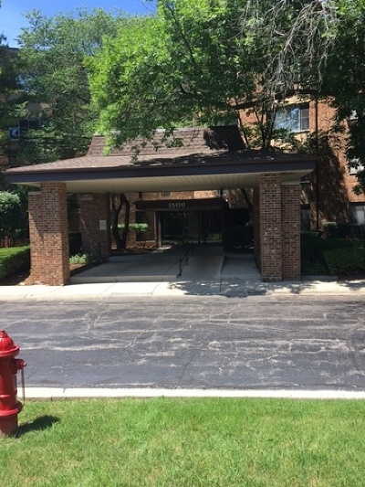 Hoffman Estates Condo/Townhouse For Sale: 1500 Robin Circle #301