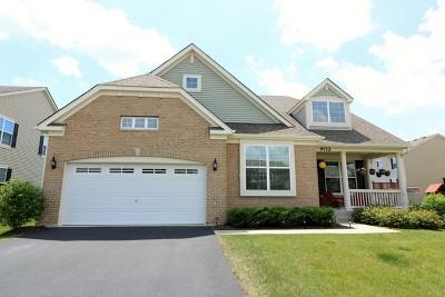Huntley Single Family Home For Sale: 9712 Baumgartner Street