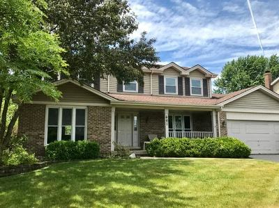 Carol Stream Single Family Home For Sale: 661 Andrew Lane