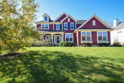Schaumburg Single Family Home For Sale: 436 Birmingham Lane
