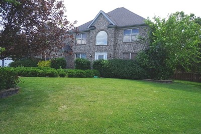 Plainfield Single Family Home Re-activated: 11457 South Cindy Court