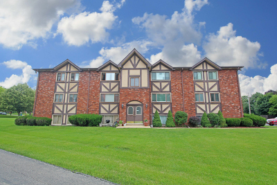 West Dundee Condo/Townhouse For Sale: 319 Dunning Avenue #3D