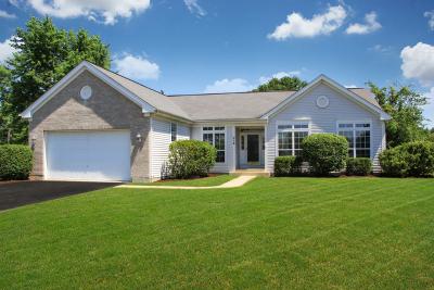 Oswego Single Family Home Contingent: 214 Angela Circle