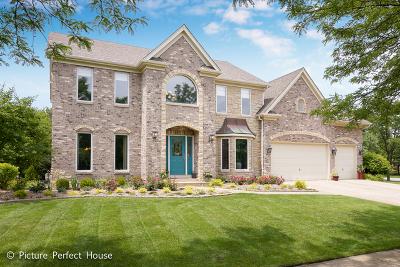 Breckenridge Estates Single Family Home For Sale: 2603 Winter Park Drive