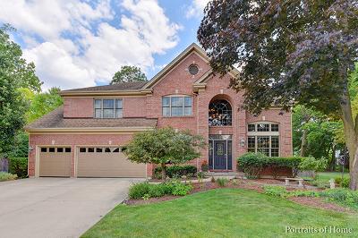 Wheaton Single Family Home For Sale: 718 Weaver Court