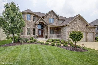 Naperville Single Family Home For Sale: 4052 Juneberry Road