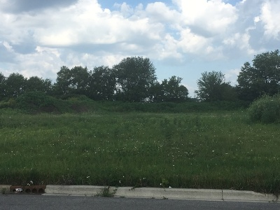 Genoa Residential Lots & Land For Sale: Lot 11 Hadsall Street