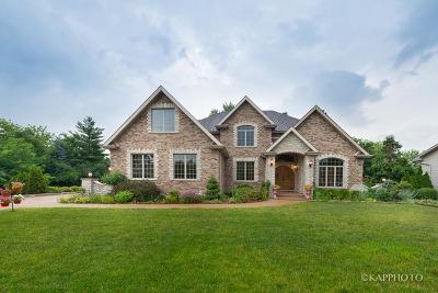 Addison Single Family Home For Sale: 779 North 9th Avenue