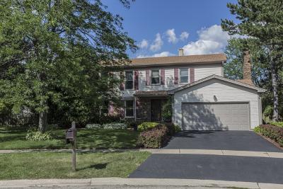 Bartlett Single Family Home Contingent: 1193 Jasmine Court