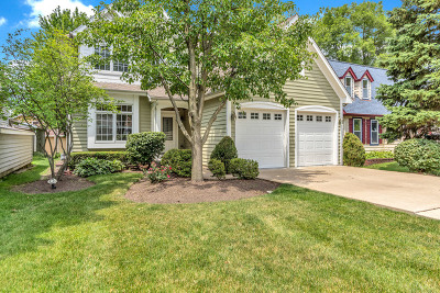 Naperville Heights Single Family Home For Sale: 1311 North Main Street