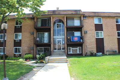 Hoffman Estates Condo/Townhouse For Sale: 735 Heritage Drive #302