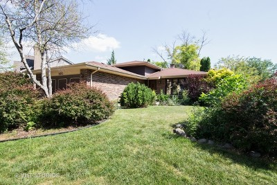 Westmont Single Family Home For Sale: 503 Nelson Lane