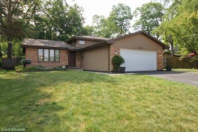 Steger Single Family Home For Sale: 3709 Morgan Court