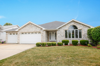 Romeoville Single Family Home For Sale: 799 Erie Drive