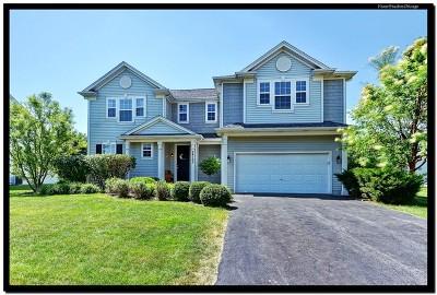 Plainfield Single Family Home Contingent: 24165 Apple Creek Lane