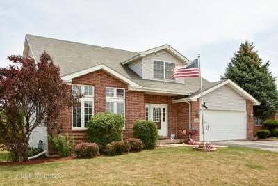 Steger Single Family Home For Sale: 3205 Sandy Ridge Drive