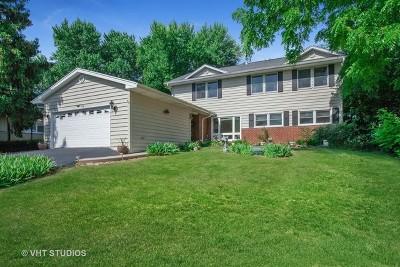 Barrington Single Family Home For Sale: 910 Division Street