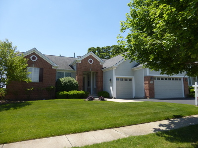 Huntley Single Family Home For Sale: 12925 River Park Drive