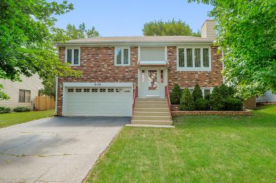 Bartlett Single Family Home Contingent: 836 Prairie Avenue