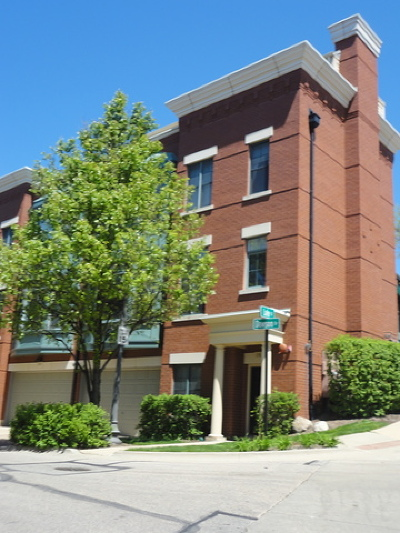Elgin Condo/Townhouse For Sale: 163 Dawson Drive