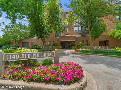 Hinsdale Condo/Townhouse For Sale: 1140 Old Mill Road #404F