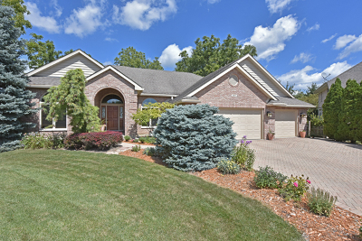 Antioch Single Family Home For Sale: 585 Edelweiss Court