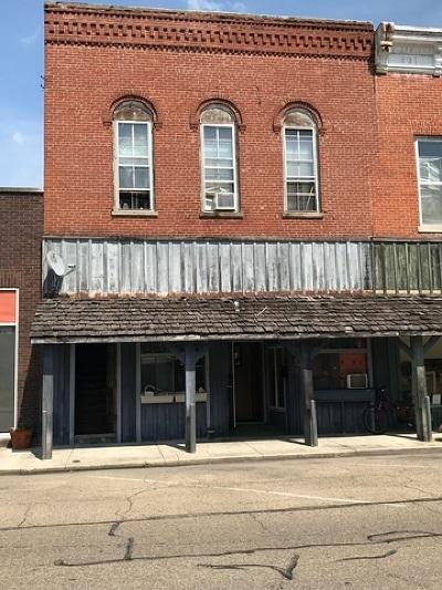Farmer City Multi Family Home For Sale: 113 South Main Street