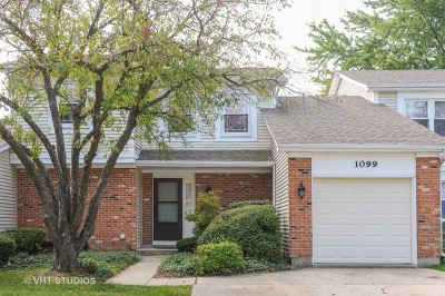 Schaumburg Condo/Townhouse Contingent: 1099 Colony Lake Drive