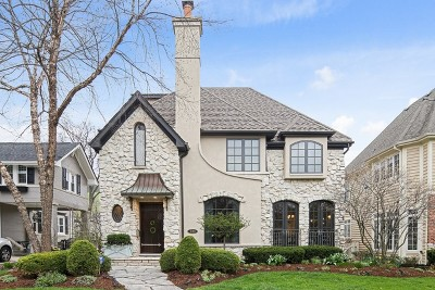 Hinsdale Single Family Home For Sale: 733 South Grant Street