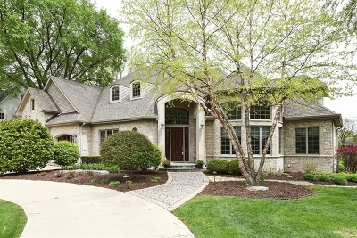 Hinsdale Single Family Home For Sale: 841 South Stough Street