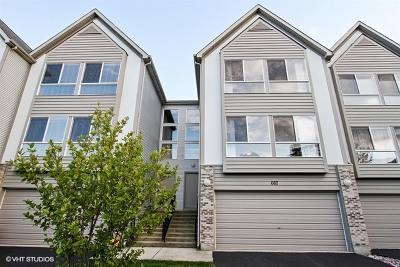 Mundelein Condo/Townhouse For Sale: 667 Diamond Pointe Drive