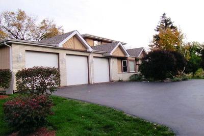 South Elgin Single Family Home For Sale: 101 Mavis Avenue