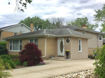 Roselle Single Family Home For Sale: 541 Sycamore Avenue
