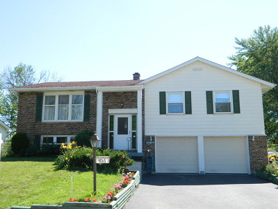 Hoffman Estates Single Family Home For Sale: 4065 Suffolk Lane