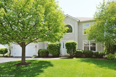Plainfield Single Family Home For Sale: 25001 Chelsea Lane