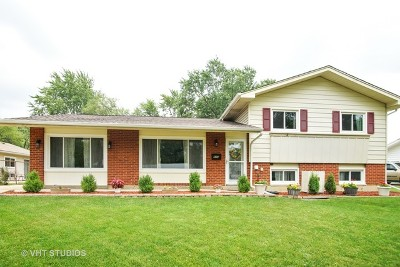 Hoffman Estates Single Family Home Re-activated: 955 Olive Street