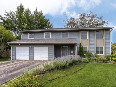 Roselle Single Family Home For Sale: 773 Parkview Court
