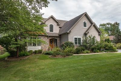 Bensenville Single Family Home For Sale: 4n311 Pine Grove Avenue