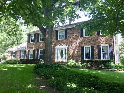 Elgin Single Family Home For Sale: 8n849 Hopps Road
