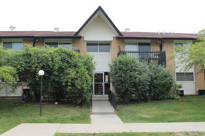 Willowbrook Condo/Townhouse For Sale: 21b Kingery Quarter #206