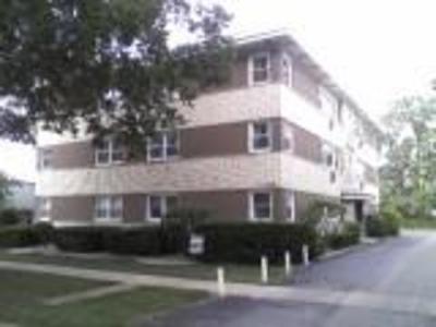 La Grange Park Condo/Townhouse For Sale: 308 Beach Avenue #3A