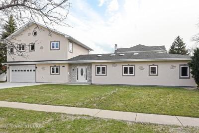 Schaumburg Single Family Home For Sale: 227 South Walnut Lane