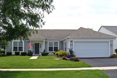 Huntley Single Family Home For Sale: 13453 Grainery Lane
