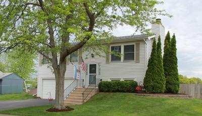 Bartlett Single Family Home For Sale: 834 Bay Court