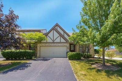 Hoffman Estates Condo/Townhouse For Sale: 4580 North Sapphire Drive