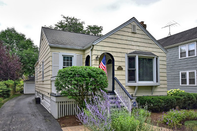 Western Springs Single Family Home For Sale: 4537 Central Avenue