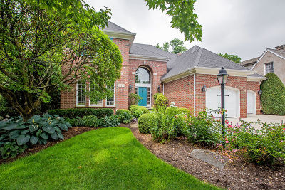 Hinsdale Single Family Home For Sale: 832 South Garfield Street