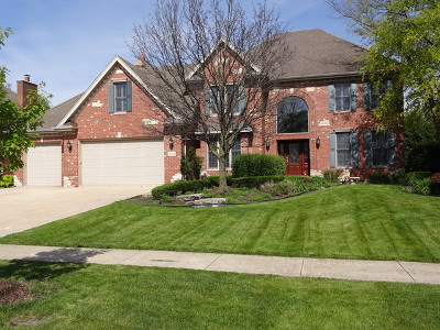Mokena Single Family Home Contingent: 21039 Tail Feathers Drive