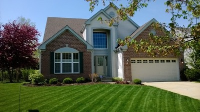Streamwood Single Family Home For Sale: 951 High Point Lane